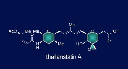 thailanstatin-a